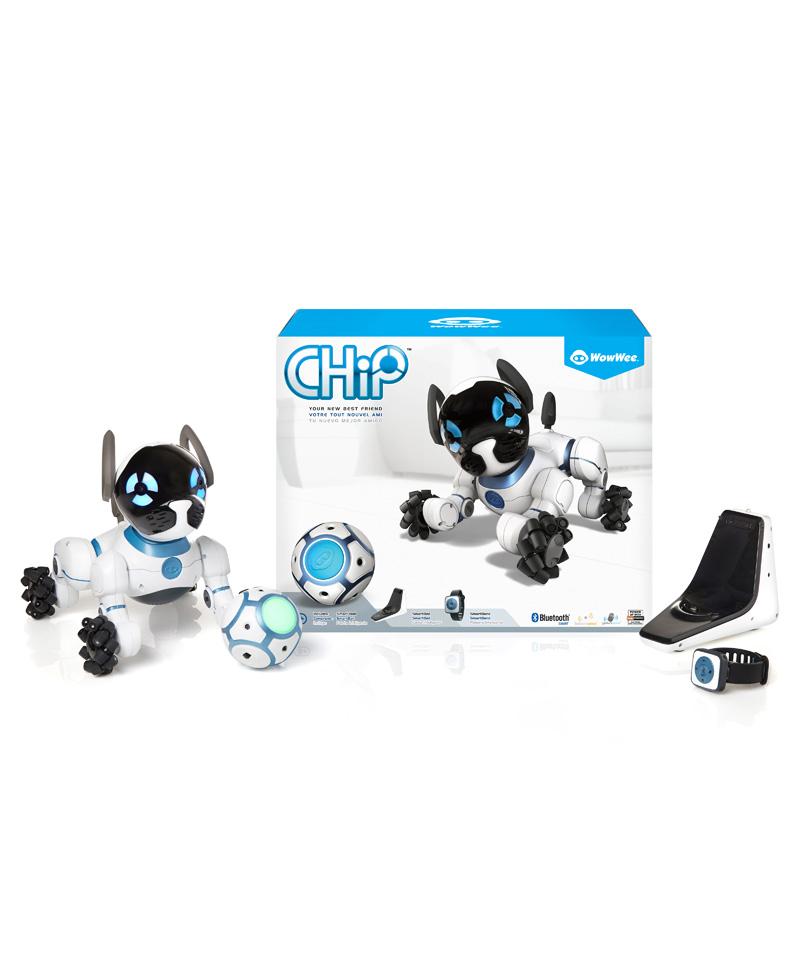 Chip le chien connecté avec ses accessoires